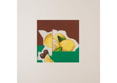 Collage con fruta 2