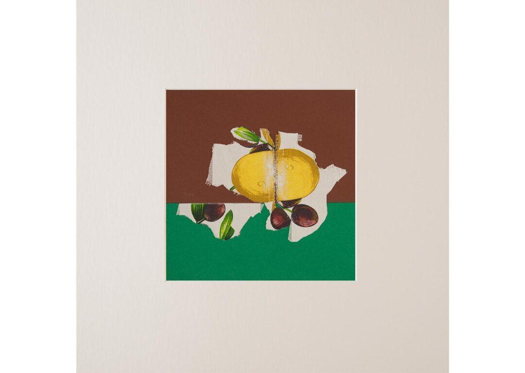 Collage con fruta 4